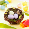 Easter eggs in nest - Stock Photo