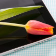 Royalty-Free Stock Photo: Tablet touch with tulip