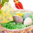 Easter colorful eggs — Stock Photo