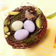 Easter eggs in birds nest — Stock Photo #4818721