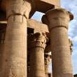 The Egyptian columns — Stock Photo