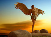 Chica con alas. — Foto de Stock
