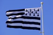 Drapeau breton — Stock Photo