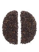 Forma de las semillas de hecha de granos de café — Foto de Stock