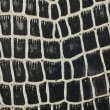 Texture background black and white snake leather — Stock Photo