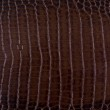 Texture background brown snake leather — Stock Photo