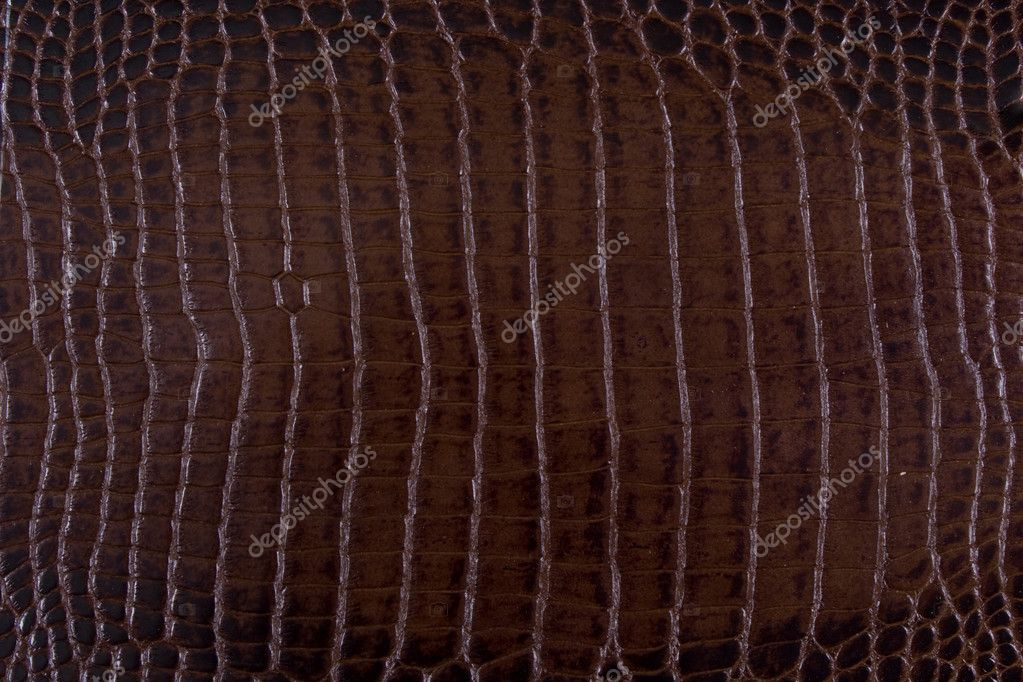 Texture background brown snake leather — Stock Photo #5288492
