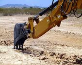 マーク 4 を掘る — ストック写真
