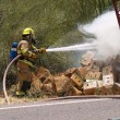 Stock Photo: Extinguished