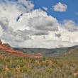 Stock Photo: Storm approaching Oak Creek Canyon
