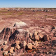 View from the Blue Mesa 2 — Stock Photo #5304532