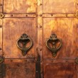 Medieval coppery gates - Stockfoto