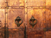 Medieval coppery gates — Stock Photo