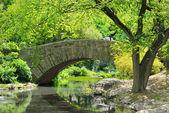 Estanque del parque central — Foto de Stock
