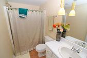 интерьер ванной комнаты — Стоковое фото