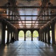 Central Park Lower Passage — Stock Photo