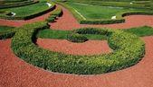 декоративные сад, контрасты, красный и зеленый — Стоковое фото
