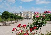 Piękne róże i baroku - styl rokokowy pałac w tle — Zdjęcie stockowe