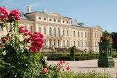 Lindas rosas e barroco - Palácio de estilo rococó no fundo — Fotografia Stock