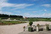 Jardim ornamental, contrastes de vermelhos e verdes — Fotografia Stock