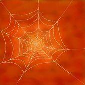 赶上在蜘蛛网上的露珠的眼泪 — 图库照片