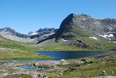 Rio e lago no trollstigen, mais og romsdal, Noruega — Fotografia Stock