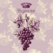 Retro design label with grapevine - 