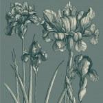 ročník karta s květinami — Stock vektor