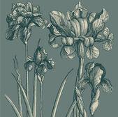 Vintage kaart met bloemen — Stockvector