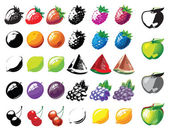 Fruits collection against white — Stock Vector