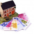 Stock Photo: House with euro money notes
