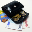 An open purse with euro currency & credit cards — Stock Photo