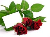 Red roses with gift tag — Stockfoto