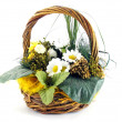 Easter flowers in a basket — Stock Photo #4693908