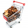 Shopping trolley with money - Stock Photo