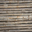 Wood texture — Stock Photo #4477569