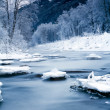 Frozen river — Stock Photo #4598742