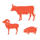 Cuts-cow-mutton-pig — Vettoriale Stock