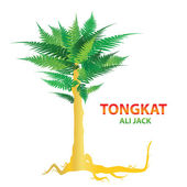 Tongkat-ali-jack — Stock Vector