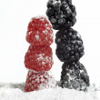 Humor Christmas tree raspberry and blackberry — Stock Photo