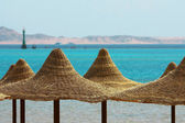 Umbrellas, Mount and Red Sea — Stock Photo