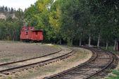 Старый заброшенный поезд — Стоковое фото