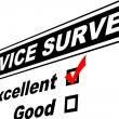 Stock Photo: Excellent Customer Service Survey