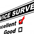 Excellent Customer Service Survey — Stock Photo