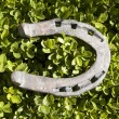 Horseshoe - Stock Photo