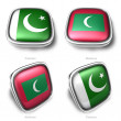 3d pakistan and maldivesflag button - ストック写真