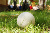 Volleyball on the green grass — Stock Photo