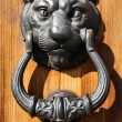 Decorative door knocker — Stock Photo