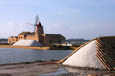 Saltworks — Stock Photo