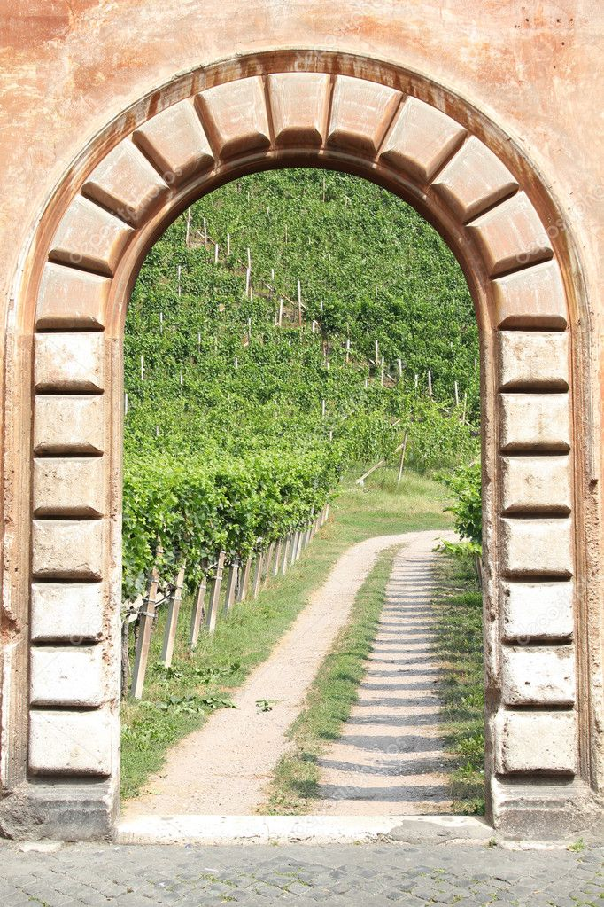 Vintage door view - gravel road to a vineyard in Italy — Stock Photo #4459649